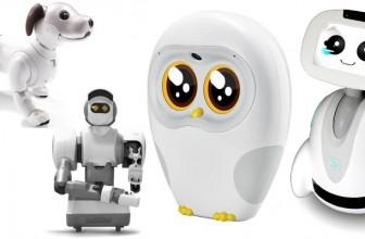 Robotii Casnici – mai Mult Decat Niste Jucarii Scumpe …